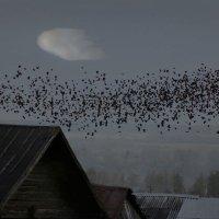 Ночные полеты :: Валерий Талашов