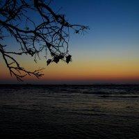 Закат-залив Восток (2) :: Boris Khershberg