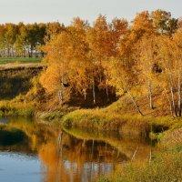 Осень  на  озере :: Геннадий С.