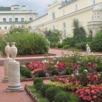 Висячий сад Малого Эрмитажа. :: Маера Урусова