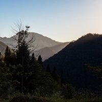 На закате :: Андрей Гриничев