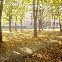 осень :: Luiza 157
