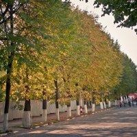Осень :: Евгений Анисимов