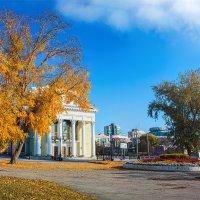 Последние солнечные дни :: Андрей Пашков