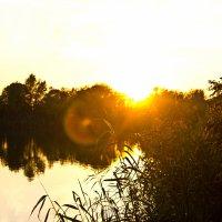 Вечерняя река :: Сергей Гибков