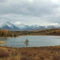На Улаганском перевале :: Олег Драгалин
