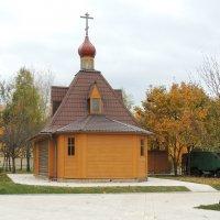 Церковь Димитрия Донского в Садовниках. :: Александр Качалин