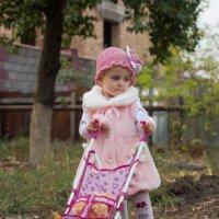 Гуляет с коляской :: Евгения Беркина