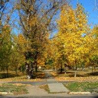 Осень в моём городе... :: Сергей Петров