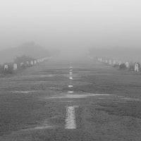 там ... , за туманами , вечными , пьяными, мы своё счастье найдём ! , пойдём !!! :: человечик prikolist