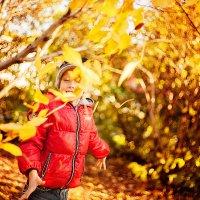 Осень :: Татьяна Куртукова