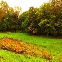 Летний сад :: Михаил Жуковский