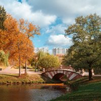 два цвета осень и лето :: Екатерина Рябцева