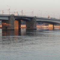 Мост Александа Невского :: Владимир Гилясев