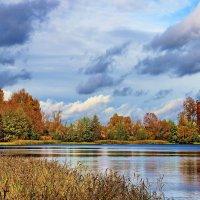 Осенних дней патриархальность... :: Лесо-Вед (Баранов)