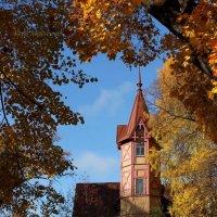 Осень на Каменном острове :: Вера Моисеева