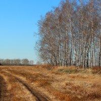 Сибирь :: Оксана Яремчук
