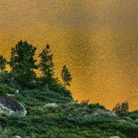 Золотое озеро. :: Ник Васильев