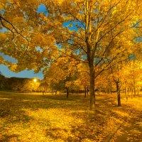 Осень :: Кирилл Малов