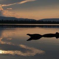Крокодил, наше солнце проглотил :: Александр Авдушев
