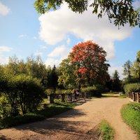 Деревня, где скучал Евгений, была прелестный уголок. :: Михаил Лесин