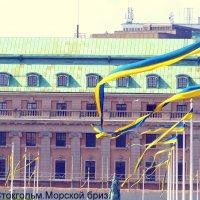 Цвета шведских флагов точь в точь как у украинских... :: Игорь