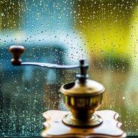 Дождливый день :: Tatiana Willemstein