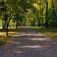 Лошицкий парк и Минске :: Андрей Криштопенко