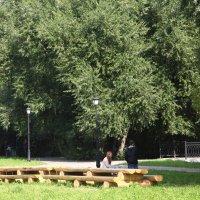 У длинного стола! :: Сеня Полевской