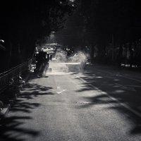 Утренняя уборка :: Михаил Бабаков