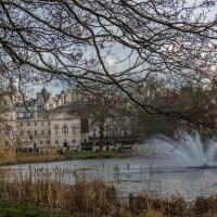 Парк, Лондон. :: Ирина Краснобрижая