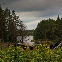 Река Умба :: Александр Кузнецов