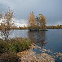 Осенний ветерок... :: Марат Шарипов