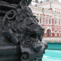 Львиная голова.Нижний Новгород :: Алёна М