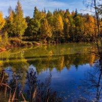 Осенний пейзаж :: Владимир Буравкин