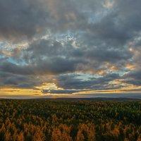 Панорама заката :: vladimir