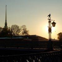 Осеннее солнце :: tipchik