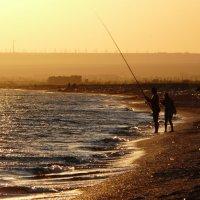 Вечерняя рыбалка :: Ольга Голубева