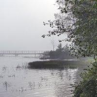 Туман на озере :: Valerii Ivanov