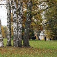 Павловск :: Светлана Дмитриева