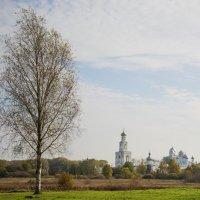 Юрьевский монастырь :: николай постернак