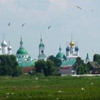 Спасо-Яковлевский Димитриев мужской монастырь :: Galina Leskova
