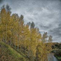 Осень :: Александр Shamardin