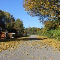 Так же падает листва в садах... :: Mariya laimite