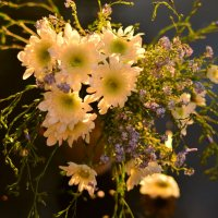цветы :: Dorosia