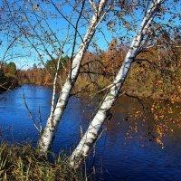 Октября Есенинская синь... :: Лесо-Вед (Баранов)