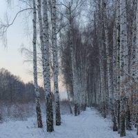 вспоминая восход солнца,зимы 2013 :: Алексей -