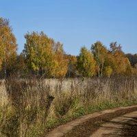Дорога в осень..... :: Viacheslav Birukov