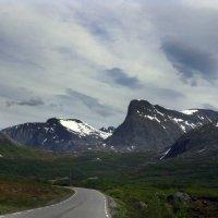 Норвегия в июле :: Lena Li
