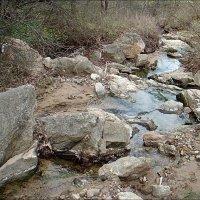 Вода камень точит... :: Нина Корешкова